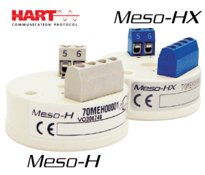 Meso-H